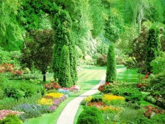 beautiful-nature-The-best-top-spring-desktop-wallpapers (9)