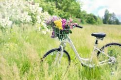 bicycle-788733__480